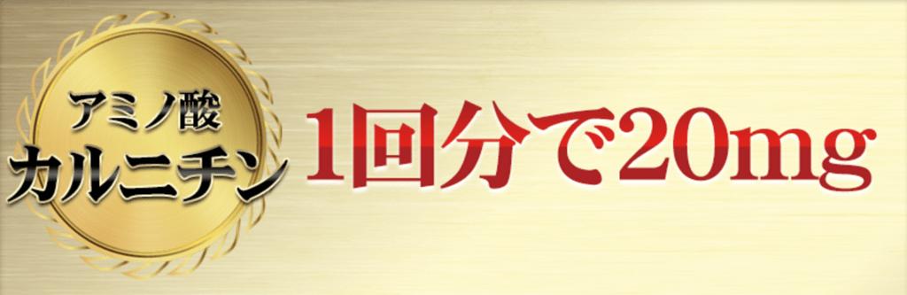 f:id:keita-agu-ynu:20170303012443p:plain