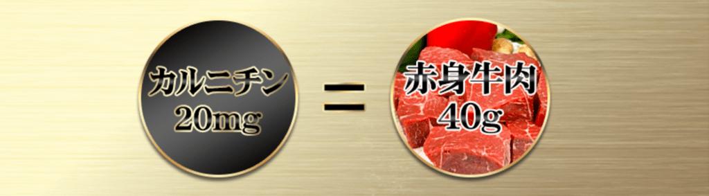 f:id:keita-agu-ynu:20170303012800p:plain